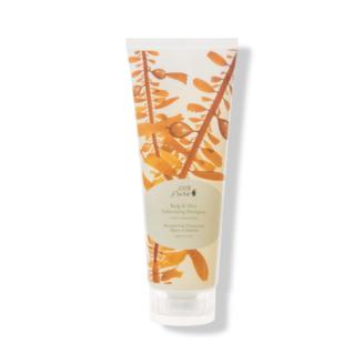 100% Pure Kelp & Mint Volumizing Shampoo - 236ml