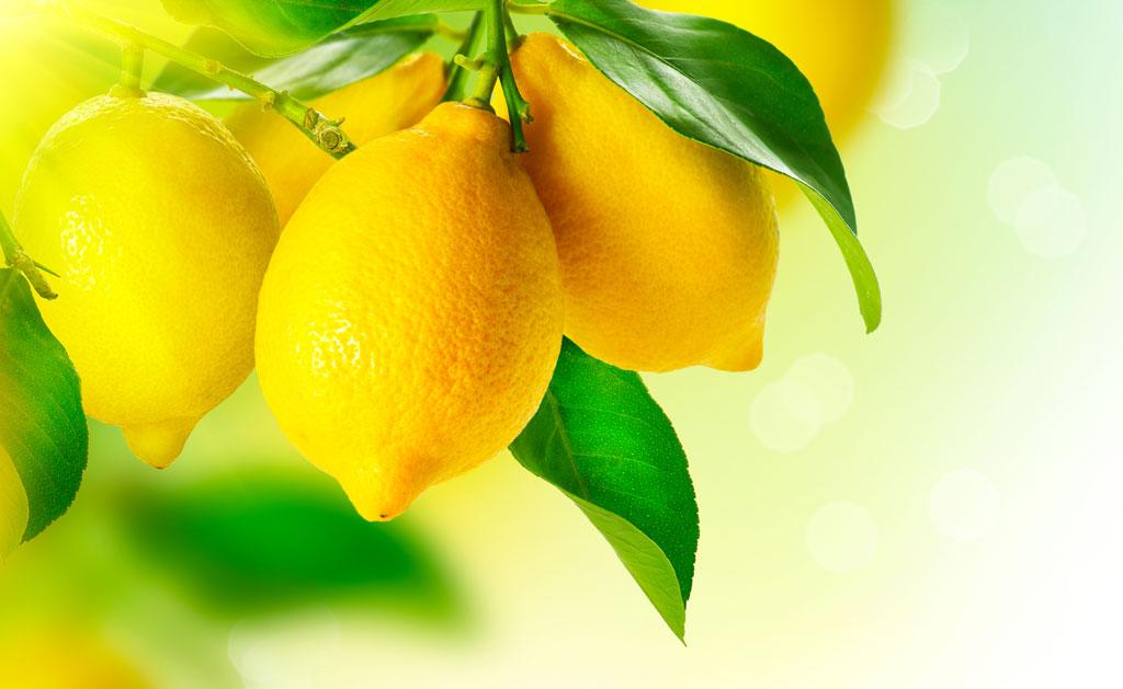 Sitronoljer i hudpleie er mye brukt